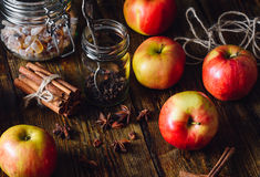 Red Apples with Different Spices. Stock Image