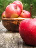 Red apples in an earthenware basin on an old wooden table. Sunlit red apples in an earthenware basin on an old wooden table outdoors Stock Image
