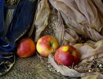Still life with apples on cloth. Red apples on fabric with embroidery. still life Stock Images