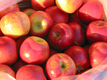 Red apples at farmer's market Royalty Free Stock Images