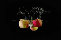 Red apples fell into the water Royalty Free Stock Photo