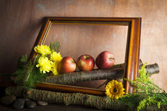 Red apples and flowers in wooden frame Royalty Free Stock Images
