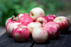 Red Apples. Fresh red apples on the wood Stock Images