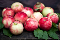 Red Apples. Fresh red apples on the wood Stock Image