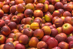 Red Apples In Fruit Market Display Royalty Free Stock Photos