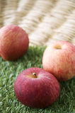 Red apples on green grass Stock Image