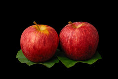 Red apples with green leafs Royalty Free Stock Image