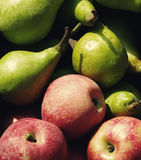 Red apples and green pears Stock Image
