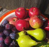 Red apples, green pears and plums in an iron bowl Royalty Free Stock Images