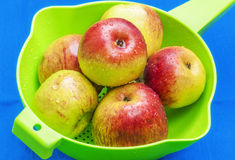 Red apples in green sieve on blue Stock Photos
