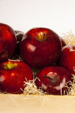 Red apples. Inside of wooden box on white background stock photography