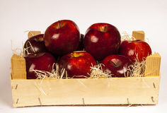 Red apples. Inside of wooden box on white background Stock Images