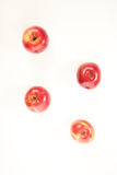 Red apples isolate Royalty Free Stock Photo