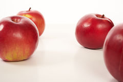 Red apples isolate Stock Images