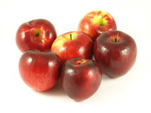 Red apples, isolated. Six red apples on isolated background royalty free stock photography