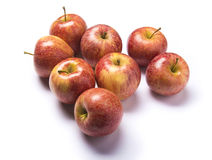 Red apples isolated. Group of red apples with white background Royalty Free Stock Image