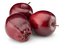 Red apples isolated on the white background Royalty Free Stock Photo