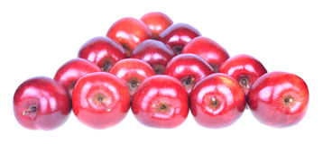 Red apples isolated on white background cutout Royalty Free Stock Photos
