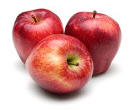 Red apples isolated on white background. Studio shot stock image
