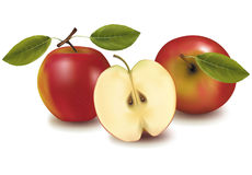 Red apples with leaves. Stock Photography