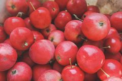 Red apples with leaves on the table. Texture of fruits. stock photos