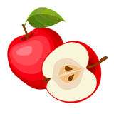 Red apples. Red apples and leaves on a white background. There is in addition a vector format (EPS 8 Royalty Free Stock Image