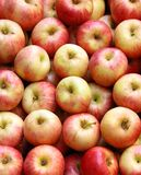Red apples at a market Royalty Free Stock Photography