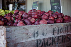 Red Apples at the Market. Fresh picked red apples at the fruit stand Stock Photo