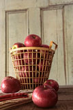 Red apples in metal basket on table Stock Photography