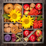 Red apples, nuts, flowers, sunflowers, dried apples Royalty Free Stock Images