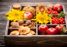 Red apples, nuts, flowers, sunflowers, dried apples. Stock Images