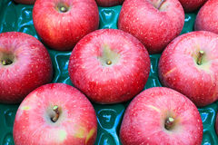 Red apples in package box Stock Images