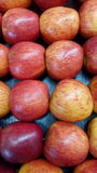 Red apples piled Stock Images