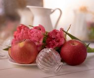 Red apples pink flower closeup white vase bokeh background. Red apple pink flower tulip closeup bokeh background blossom spring summer still-life stock photography