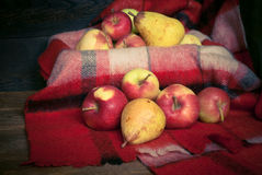 Red apples on a plaid Stock Photography