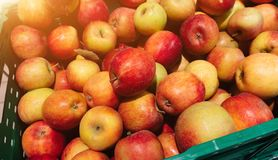 Red apples in plastic crates, ready for sale in the market. royalty free stock images