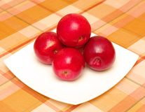 Red apples on plate. Red apples on white plate on check cloth Royalty Free Stock Photo