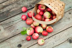 Apples in pottle on wooden background
