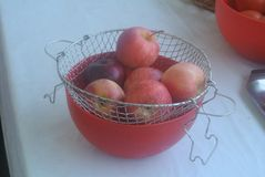 Red apples in a red bowl. Fresh red apples in a red plastic bowl on a wooden home table royalty free stock images
