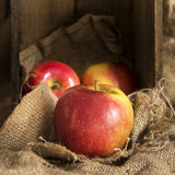 Red apples in rustic kitchen setting with old wooden box and hes Royalty Free Stock Photography