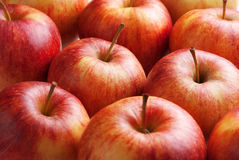 Red Apples. Several fresh and delicious red apples Royalty Free Stock Photography