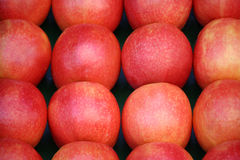 Red apples Stock Photos