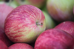 Red apples. Stock of delicious red apples Royalty Free Stock Photography