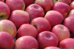 Red apples. Stock of delicious red apples Royalty Free Stock Photo