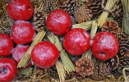 Red apples on straw and cones royalty free stock image
