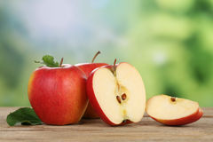 Red apples in summer with copyspace Stock Photos