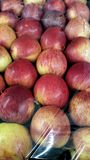 Red apples. Tray full of carefully packaged red apples under cellophane wrap Stock Photos