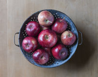 Red Apples in a Vintage Enameled Tin Colander. Red Delicious homegrown apples filling an antique bluish white enameled colander Royalty Free Stock Photos
