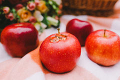 Red apples and wedding rings on a plaid blanket near the basket Stock Photo