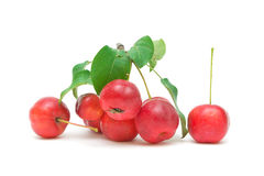 Red apples on a white background Stock Photos